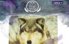 custom blog design portfolio