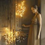 Lantern Lit