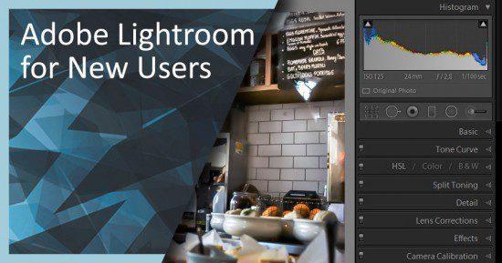 Header_deer_lightroom